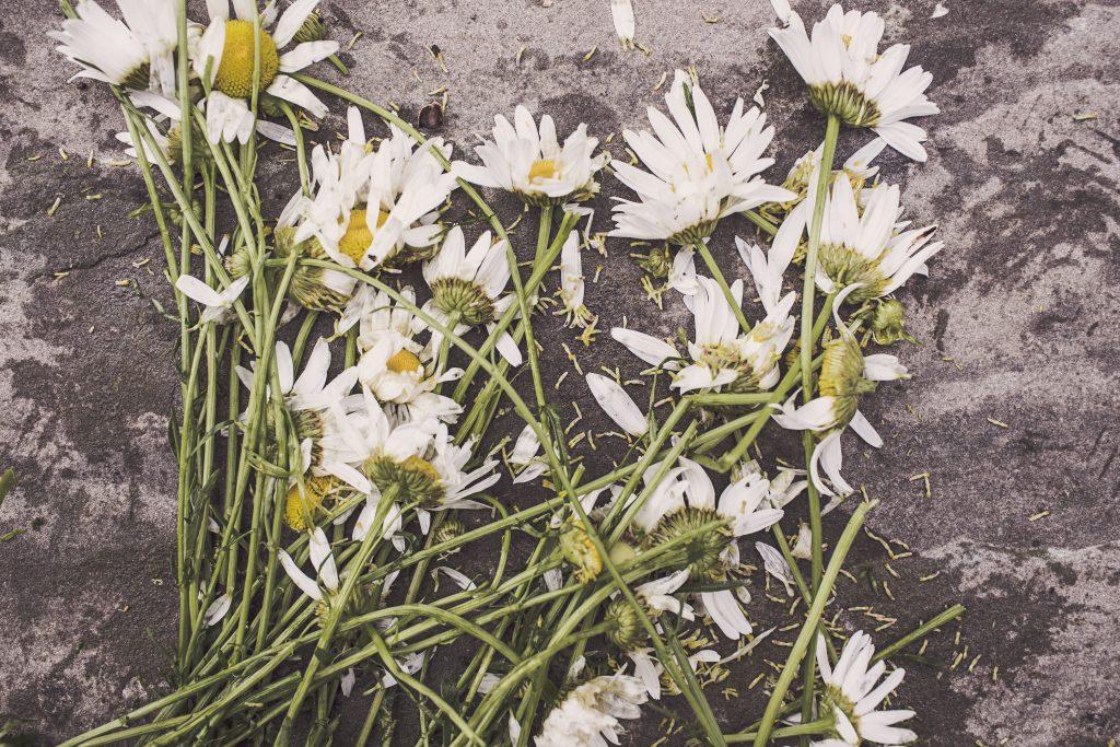 bloemen-dood