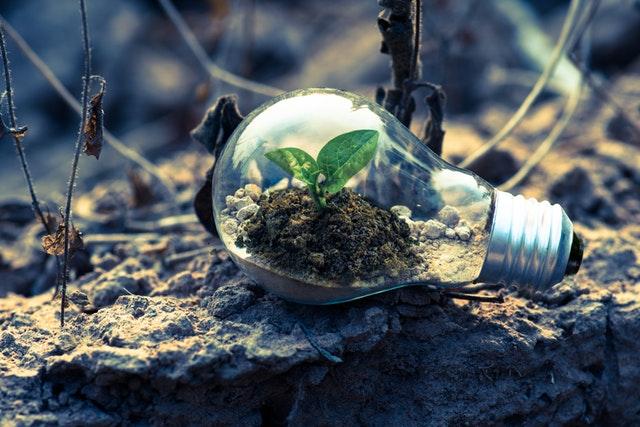 Klimaatneutrale uitvaart